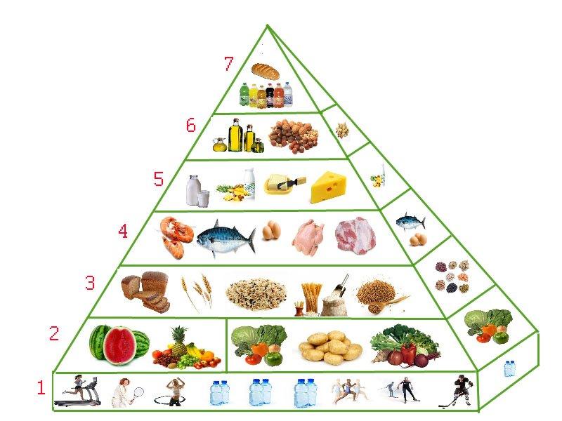 Рецепты правильного питания на каждый день
