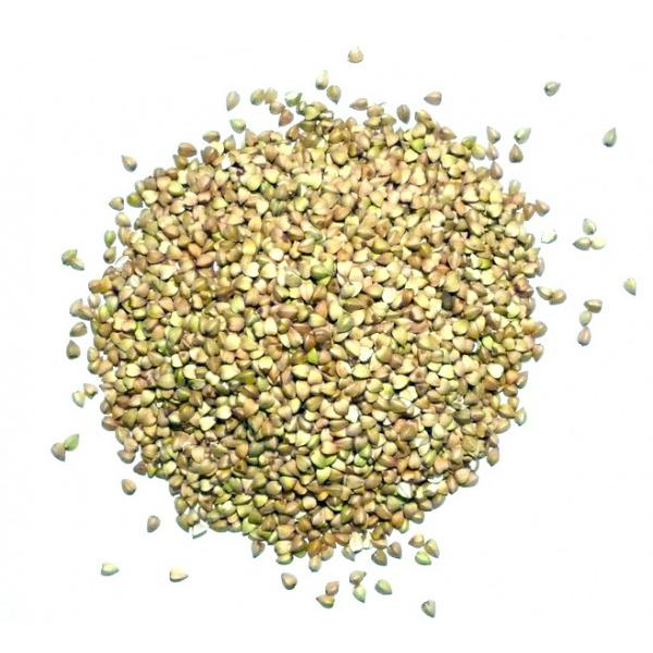 Зеленая гречка для похудения - отзывы худеющих, рецепты и как использовать гречку